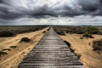 Long wooden way