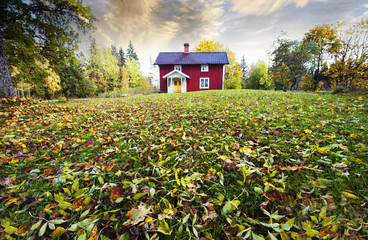 old farm, cottage surrounded by autumn leaves