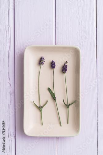 canvas print picture Drei Lavendelblüten, feminin