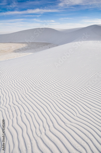 White Sands National Monument, New Mexico (USA) - 73345699