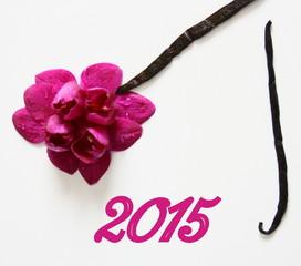 2015,orchidée rose,carte
