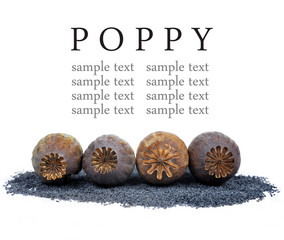 Poppy heads and seeds isolated on white background