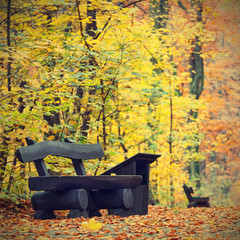 bench in the autumn park, vintage look