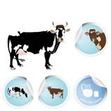 Cow.Milk.Bio dairy product