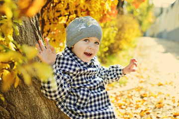 little girl in fall