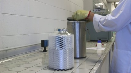Scientist pour Liquid nitrogen