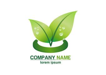 leaf, green, globe, nature, eco, plant, logo, water drop