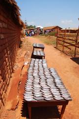The market of the Village of Pomerini - Fish Market  - Tanzania