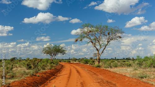 Fotobehang Afrika Rote Erde in Tsavo, Kenia