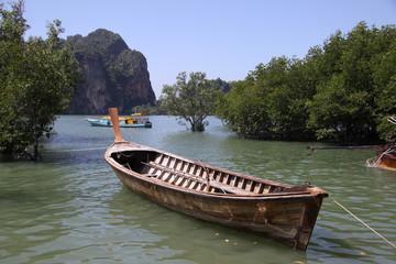лодка в мангровых зарослях