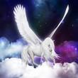 Obrazy na płótnie, fototapety, zdjęcia, fotoobrazy drukowane : Pegasus
