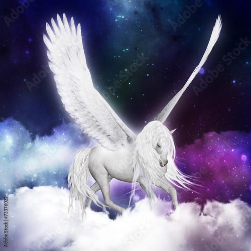 Pegasus - 73376022