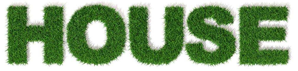 House casa parola verde erba, scritta isolata su sfondo bianco