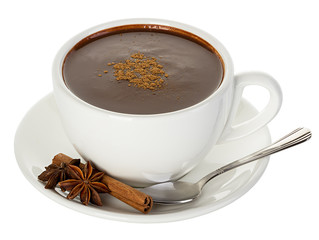 Hot chocolate with cinnamon and anise