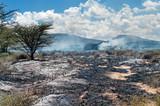 Wildfire in African savanna