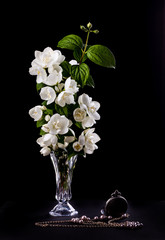 Still Life with Jasmine flowers  in a vase