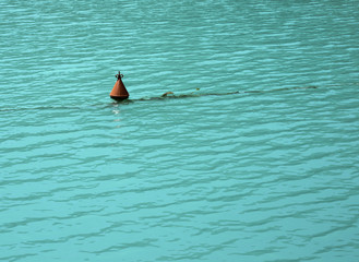 Bouy in the water
