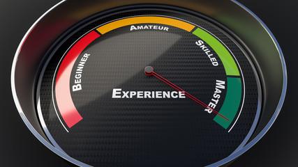 Experience level indicator