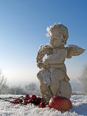 Engel, Apfel, Schnee und Eiskristalle