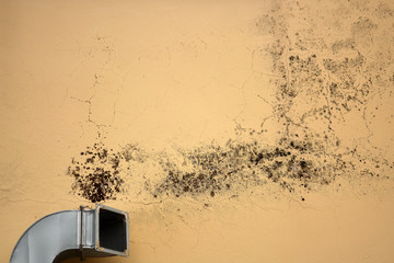 Ventilation causes mold