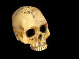 Old human skull isolated on black background.