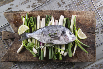 Raw sea bream