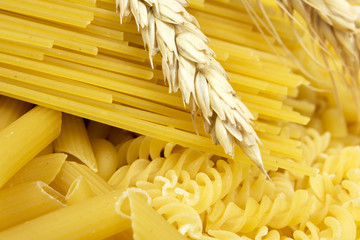 Various types of pasta and wheat