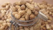 Roasted Peanuts in Glass Jar Dolly