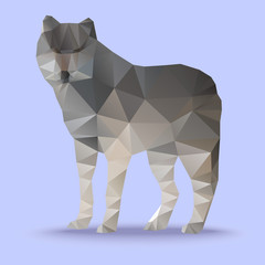Wolf geometric polygon