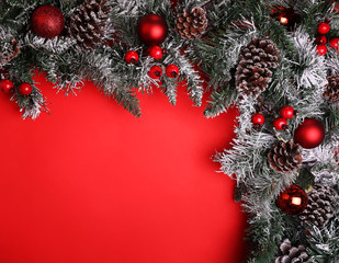 Christmas background. Branch of christmas tree with pine cones