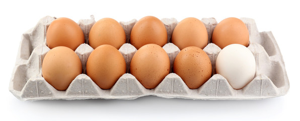 Different eggs in carton pack isolated on white