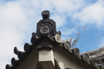 Traditional Japanese roof top