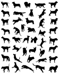 Different black silhouettes of dogs 2, vector