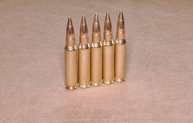 The standing cartriges 308 Winchester caliber