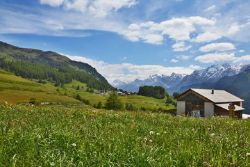 Swiss Alps-outlook from the Guarda
