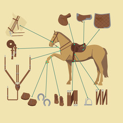 horse with various gear infographic in flat style