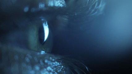 Pupil in the dark, close up