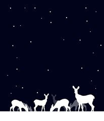 Night background with deer
