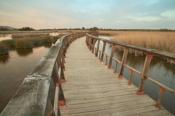 Wetland wooden pathway at sunset. Spain