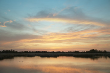 Wetland landscape in warm tone at sunset. Spain