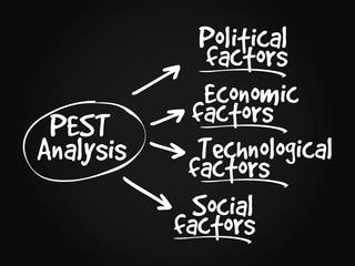 Conceptual hand drawn PEST Analysis flow chart
