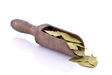 Liście laurowe z drewnianą łyżką na białym tle