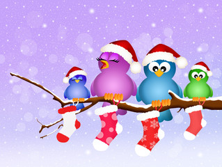 family of birds with Christmas socks