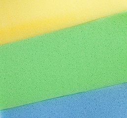 Colorful  sponge texture