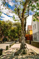 picturesque street in Quito Ecuador South America