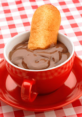 submerged in chocolate biscuit on classic tablecloth