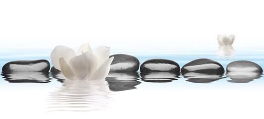 Black stones with flower in water with white background