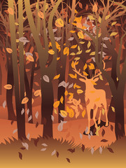 Stag in Autumn Forest