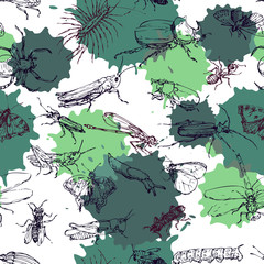 seamless pattern with line drawing insects