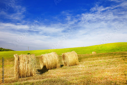 pictorial rural landscapes of Tuscany, Italy - 73424027